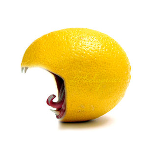 lemon__D_by_LittleSurprises
