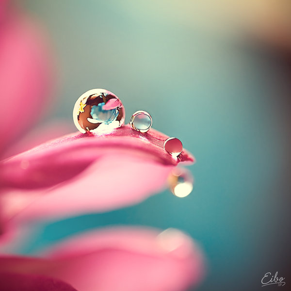 Macro Photography Water Drops18 | Creativeoverflow