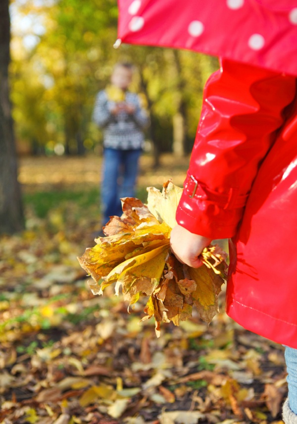 little girl with autumn leaves in the beauty park